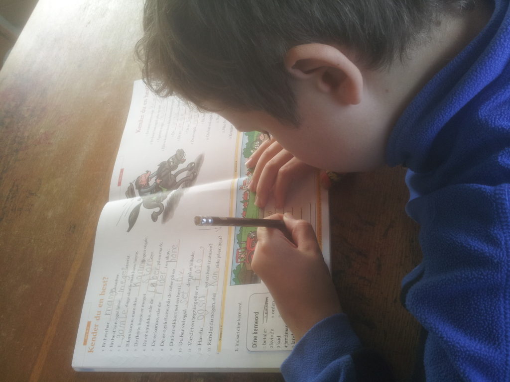 Martin laver kerneordsopgaver efter diktat