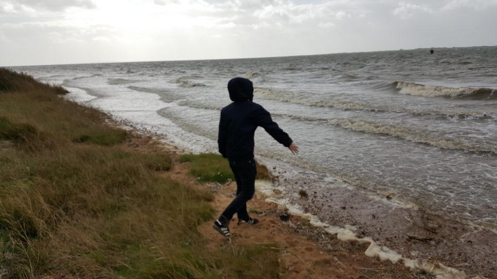 Udflugt og stensamling ved Sjelborg strand (1)