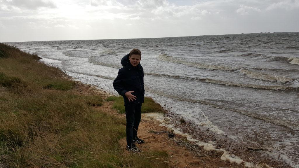 Udflugt og stensamling ved Sjelborg strand (2)