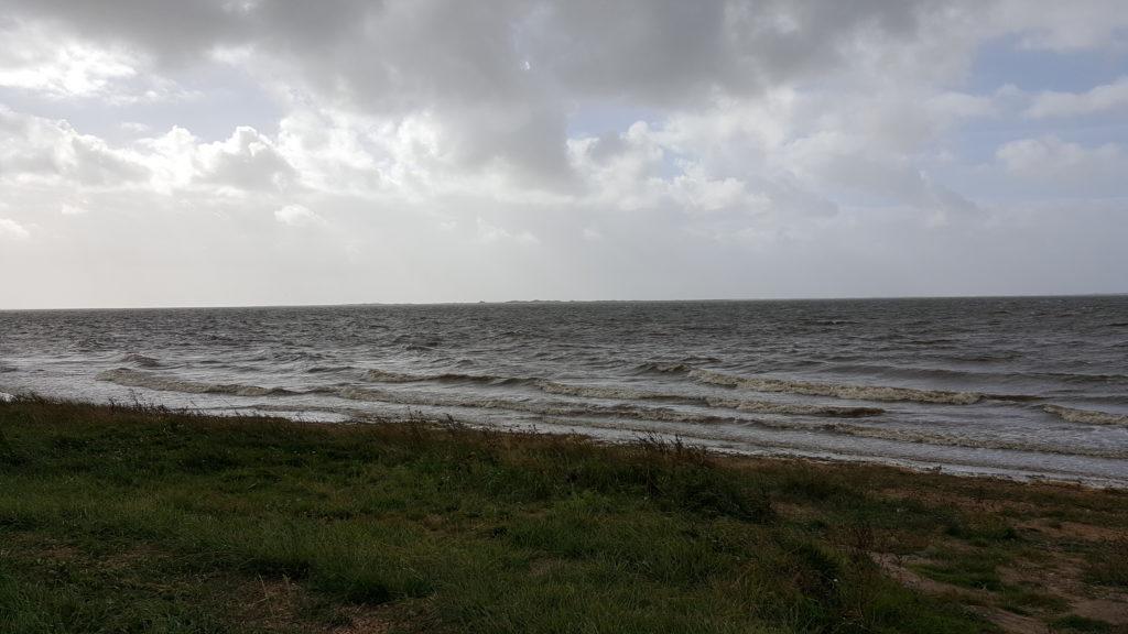 Udflugt og stensamling ved Sjelborg strand (4)